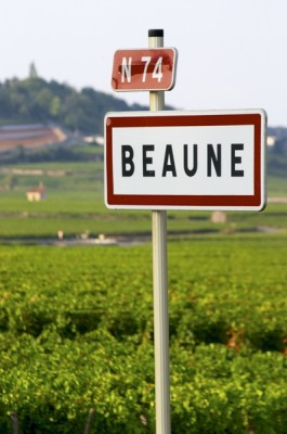 beaune vineyard tours with terroirs travels from paso robles