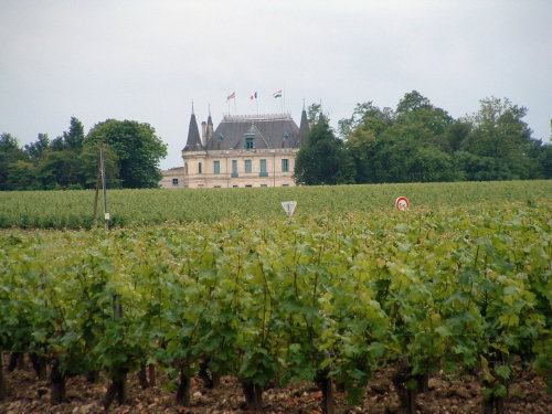 bordeaux wine region of france with terroirs travels