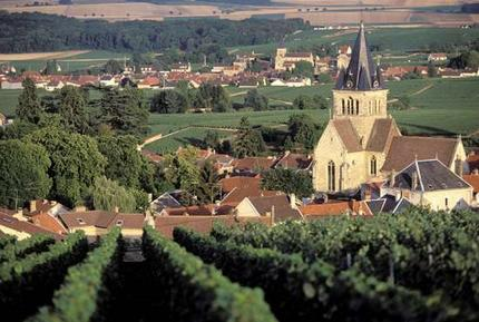 Terroirs-Travels-champagne-france-tours-image